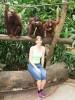 Die ganze Affenbande ;)